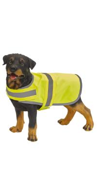 gilet jaune chien animal